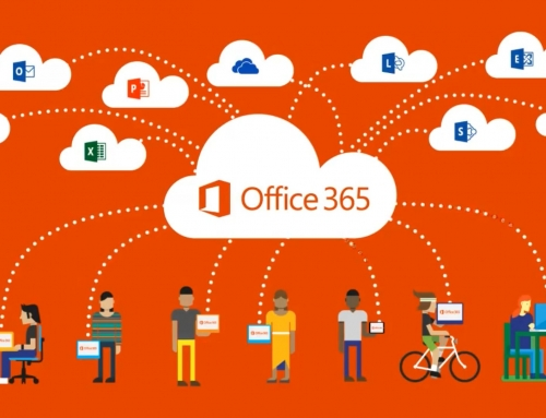 Which Office 365 Plan Is Right For Our Business?